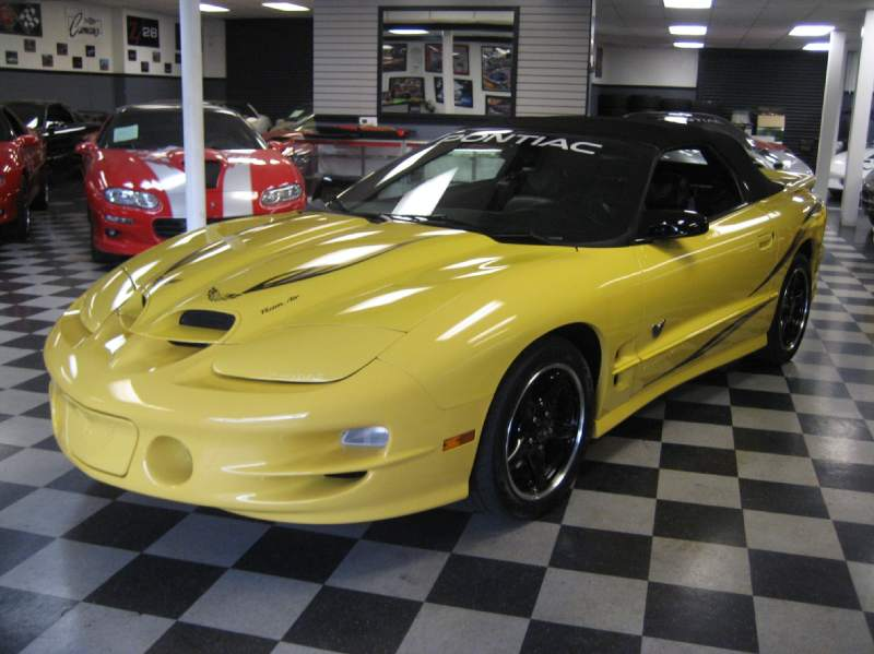 2002COLLECTORWS6TRANSAM6SPEEDCONVERTIBLE/10.JPG